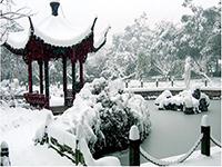 杭州海军疗养院雪景